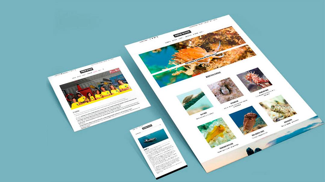 diseñador web ejemplo web de buceo